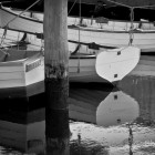 Dinghies at Franklin